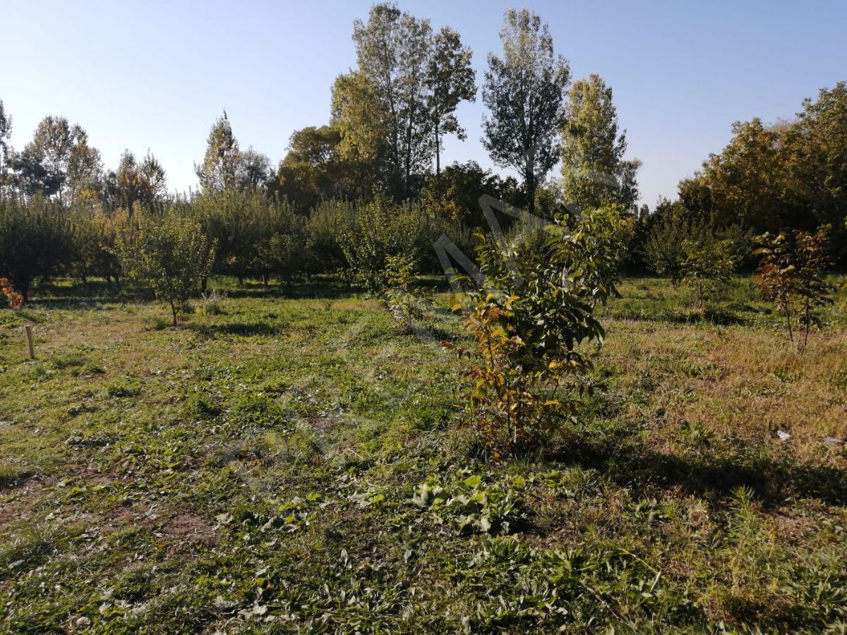 Edremit'de Meyve Bahçeli Satılık Arsa
