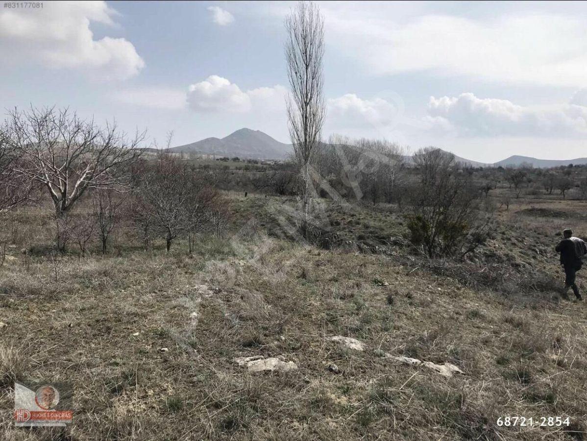 Acil Satılık Eskişehir Sivrihisarda Bağ Ve Bahçe İmarlı Arsa