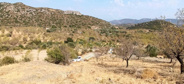 Premar Datça Hızırşahta Yolu Olan 2,700 M2 Tarla
