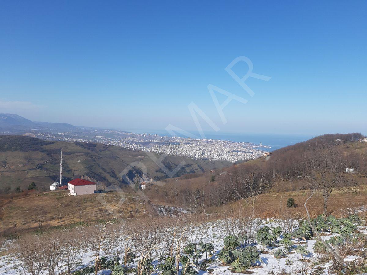 Premar Gayrimenkul'den Banu Hatipoğlu' Ndan Canik Gürgenyatak ' Ta Satılık Köy İmarlı Arazi