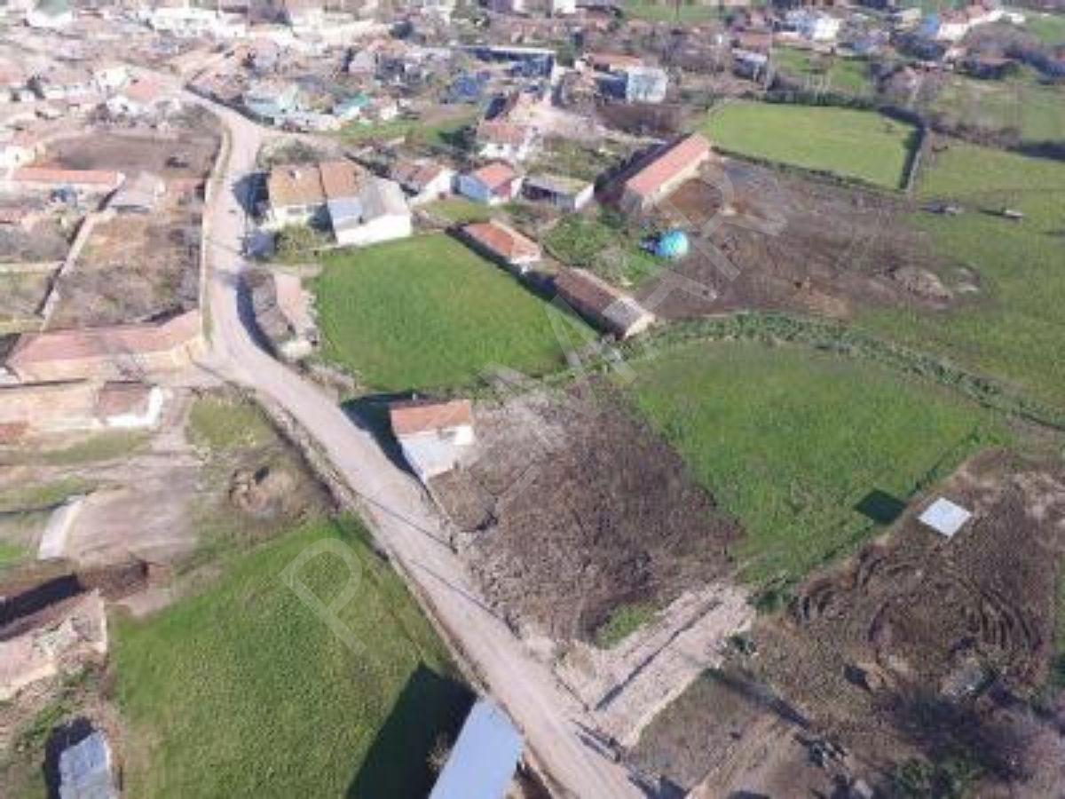 """Dünyanın En Güzel Yerinde ,adeta Bir Cennet Köşesi Olan Çanakkale Lapseki Dişbudak Köyünde Çok Değerli Bir """"çiftliğiniz""""  Olsun..."""