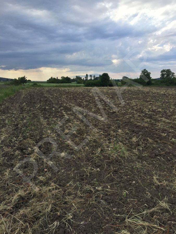 Balabancık'ta Yatırım İçin Uygun Emsalsiz Satılık Arazi