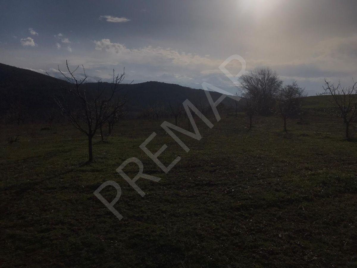 Premar D&b Den Bursa Kestel Erdoğan Köyde Satılık Meyve Bahçesi