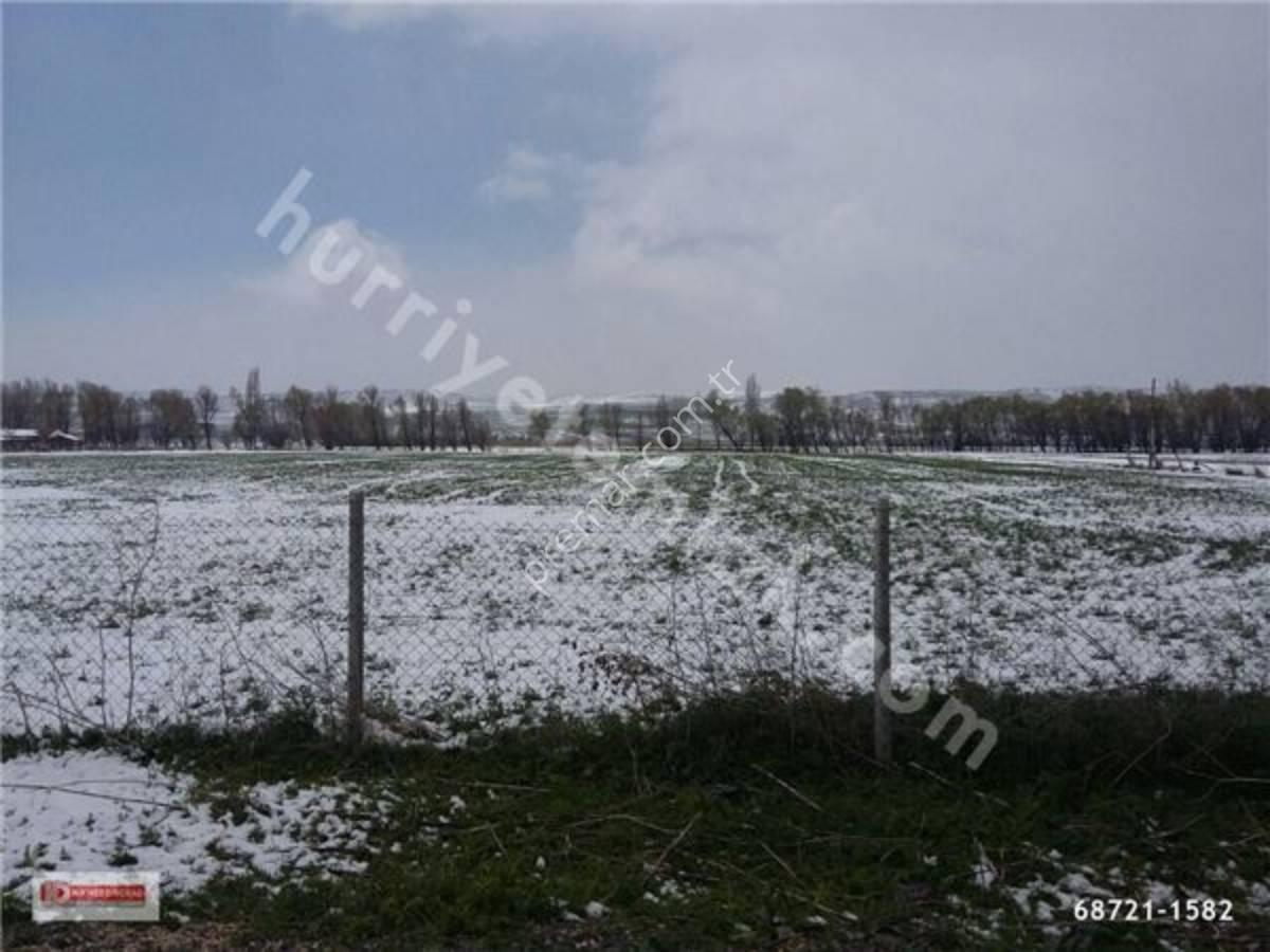 Eskişehir Tepebaşı Satılmışoğlu Mahallesinde Satılık Çiftlik