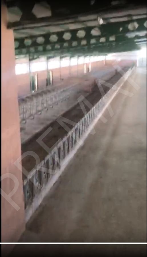 Afyonkarahisar Da Süt Üretim Çiftliği