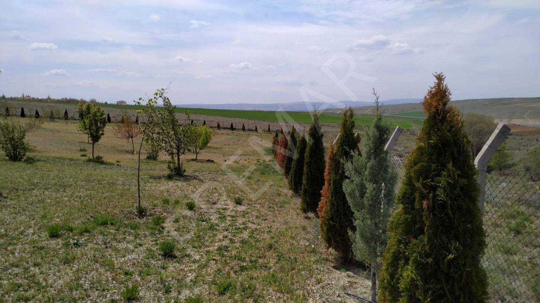 Eskişehir Tepebaşı Eğriöz Mahallesinde Satılık Bahçe Ev
