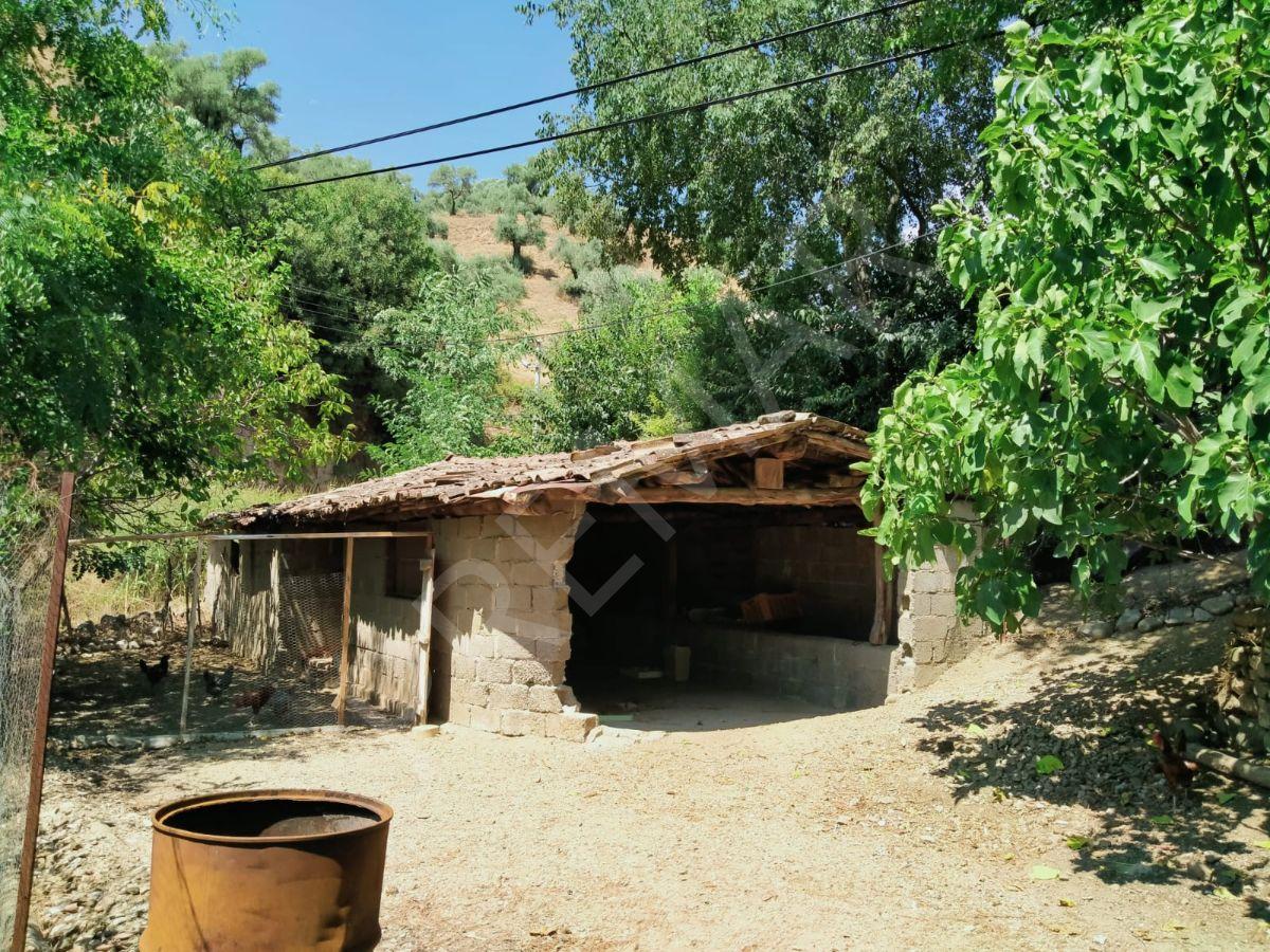 Aydın Umurlu Çayyüzü Köyünde Satılık Müstakil Ev