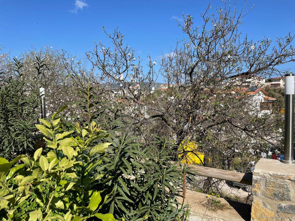 Premar Datça 2+1 Müstakil Girişli Büyük Bahçeli Yeni Daire