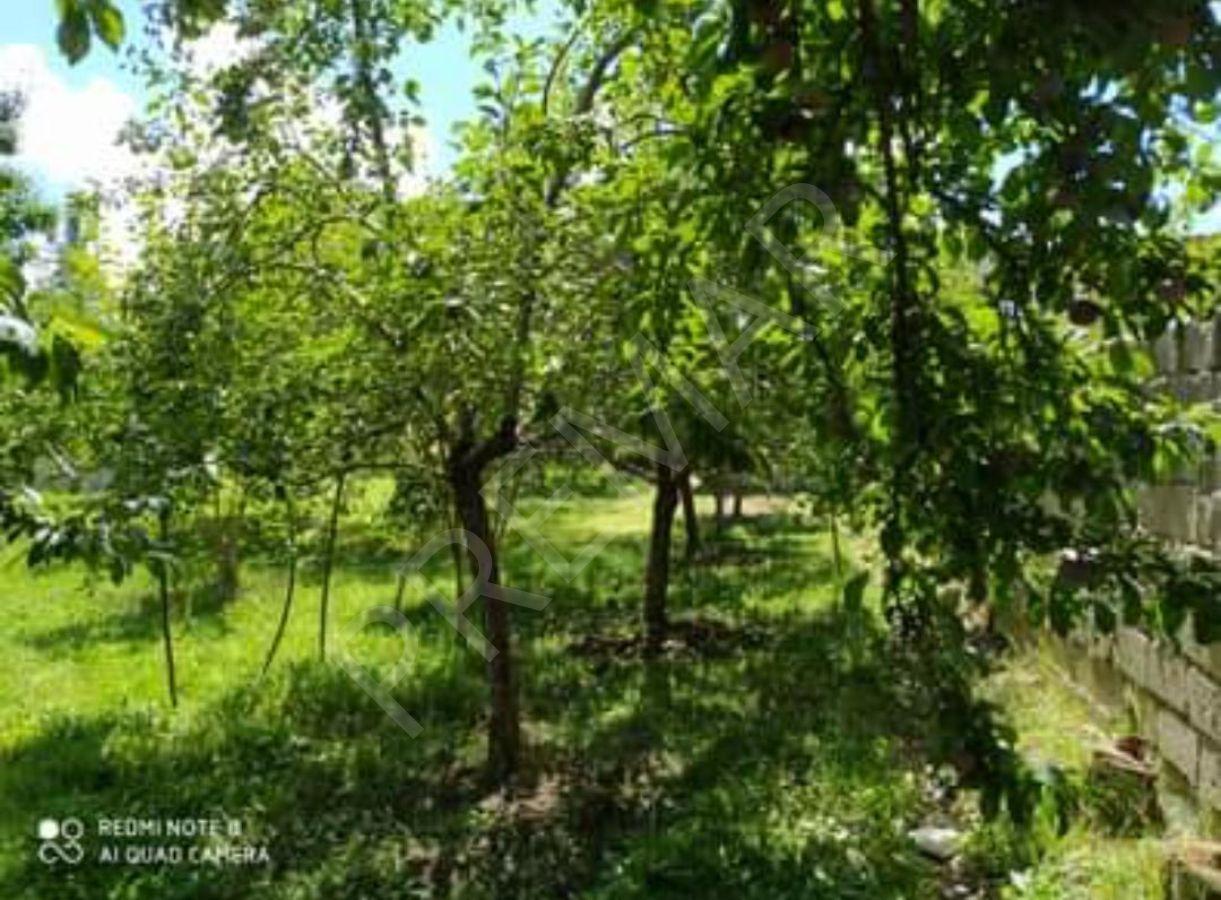 Edremit'te Meyva Bahçeli Satılık Müstakil Ev