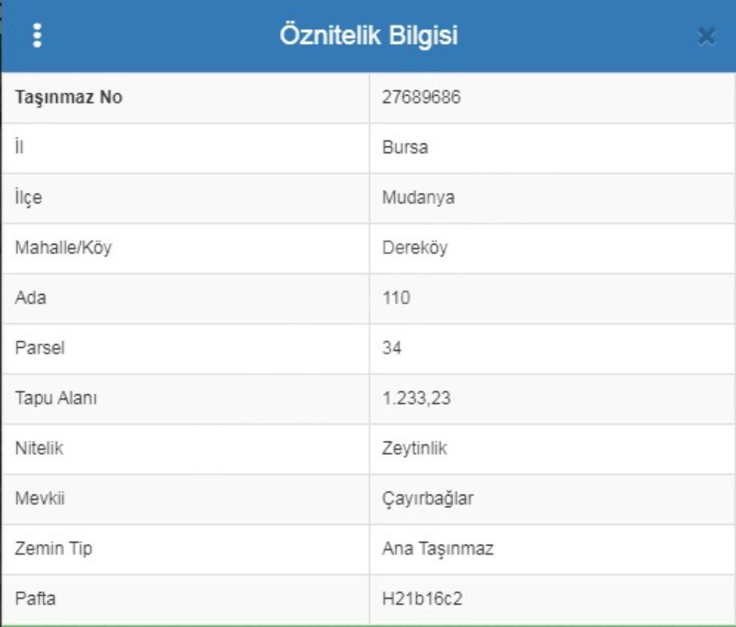 Dereköy'de Ana Yola Yakın Bütçe Dostu - Yatırım İçin İdeal Zeytinlik