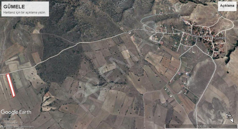 Odunpazar Gümele Mahallesinde Satılık Tarla