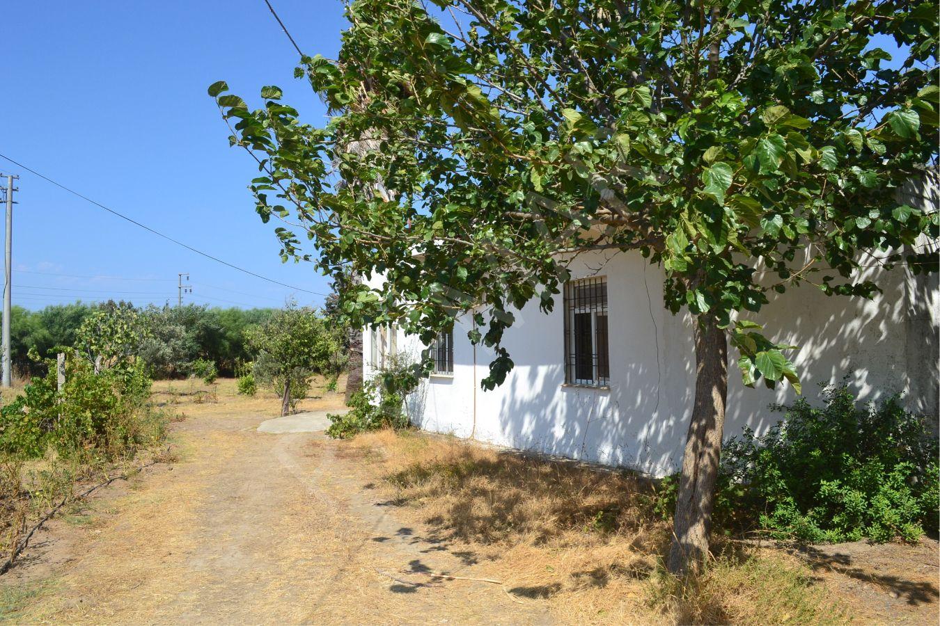 Premar Datça Kızlan'da Marmaris-datça Yoluna Cepheli 1620 M2 Arsa İçerisinde 2+1 Müstakil Ev