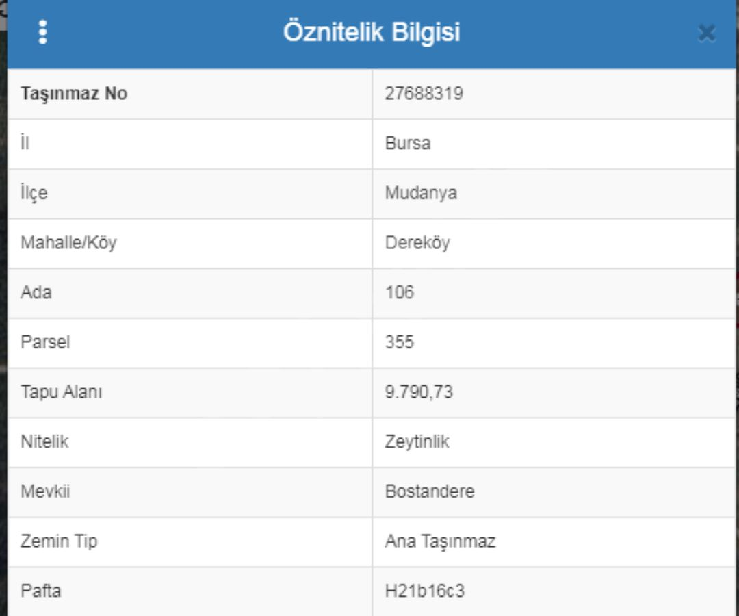 Yükselen Değer Dereköy' De Yatırıma Uygun Zeytinlik
